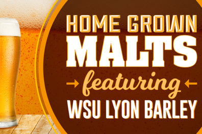 Home grown malts featuring WSU Lyon barley.