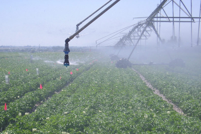 rotating irrigation system in field