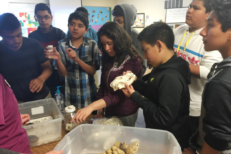 Students in classroom with turtle, skull, and veterinary samples.