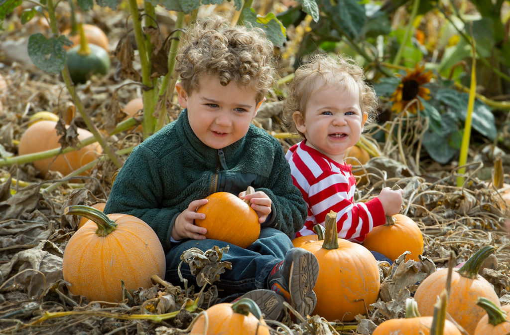 Young boy and girl sitting in a pumpkin patch.