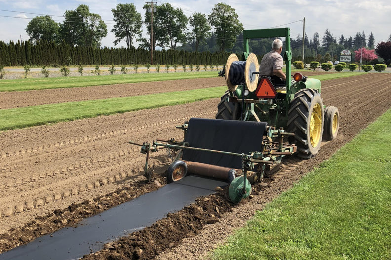 Tractor in field laying down biodegradable mulch.