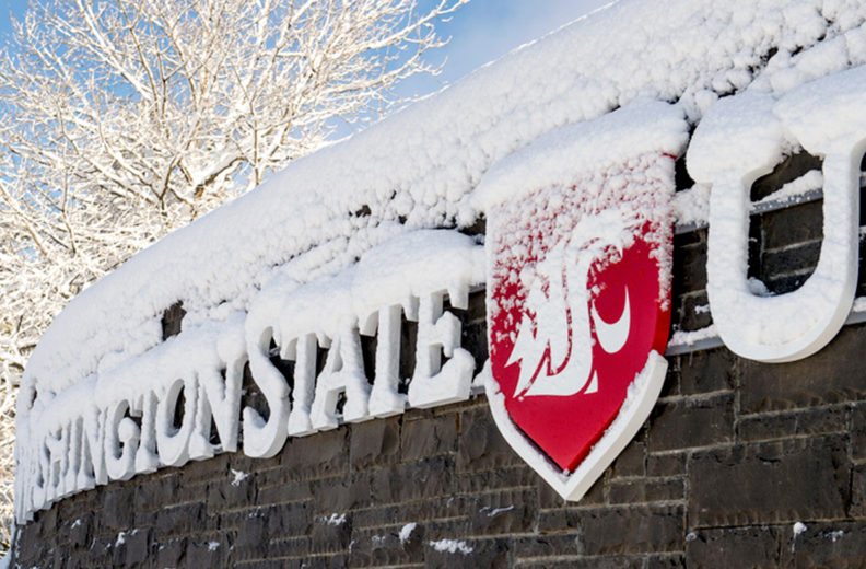Entrance to WSU Pullman covered in snow.
