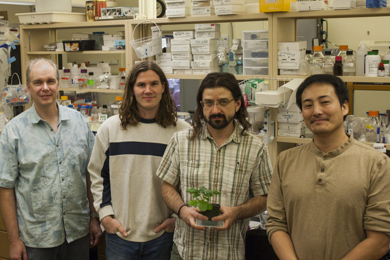 four researchers in lab, one holding a research plant specimen