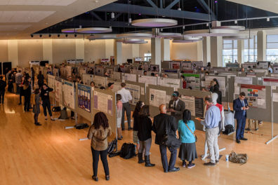 wide angle overall view of Showcase 2018 in the CUB Ballroom with more than 200 poster board displays and participants.