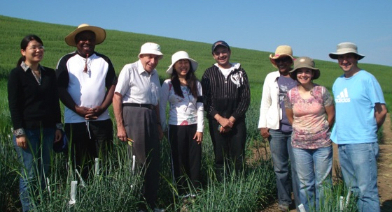 scientists pose for group shot in field of spring wheat