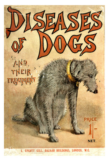 Book cover for 'Diseases of Dogs and Their Treatment'.