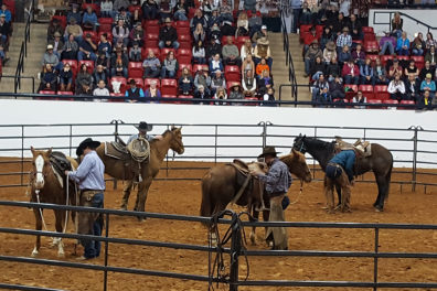 several horses and showmen in an arena, surrounded by people in gallery seating