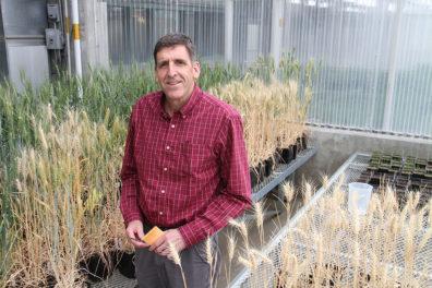 New CAHNRS Associate Dean for Research Scot Hulbert