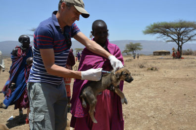 Dr. Felix Lankester vaccinates a dog in Tanzania as part of the Rabies Free Africa program.