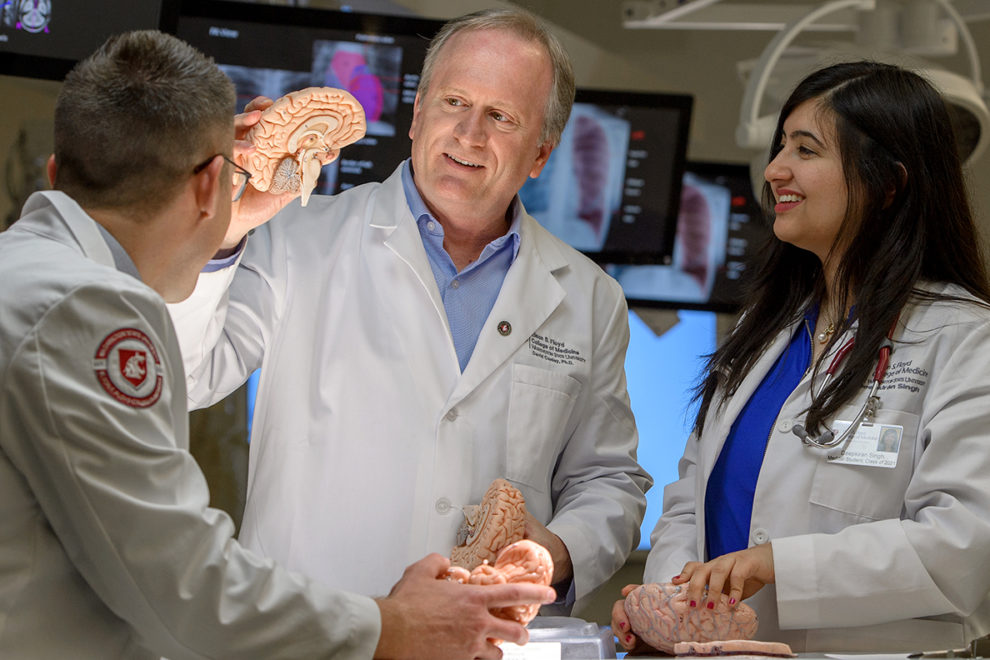 An instructor holds a model of a human brain for two medical students.