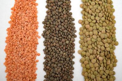 Lentils, peas and legumes