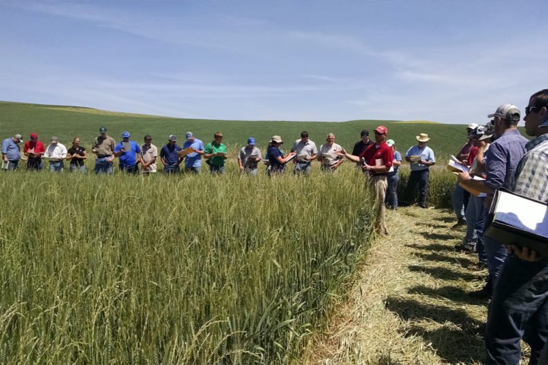 Participants standing in a field listening to a presentation.