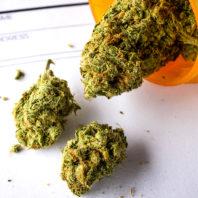 An open prescription bottle with medicinal marijuana and a blank prescription slip.
