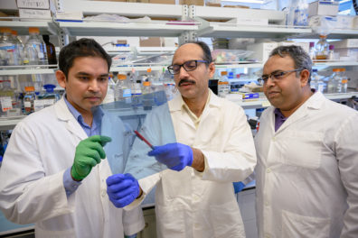 Three researchers discussing a protein array.