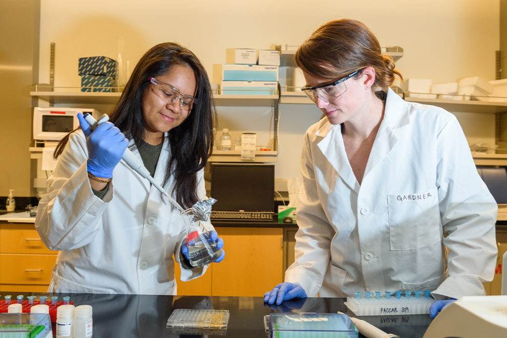 Two researchers work in a laboratory