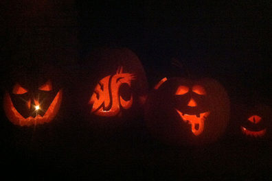 Four jack-o-lanterns, each with a different face.