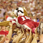 Butch Coug crowd surfs during a WSU football game.