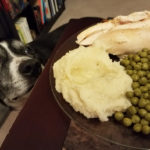 A dog looks at a plate of food on a table.