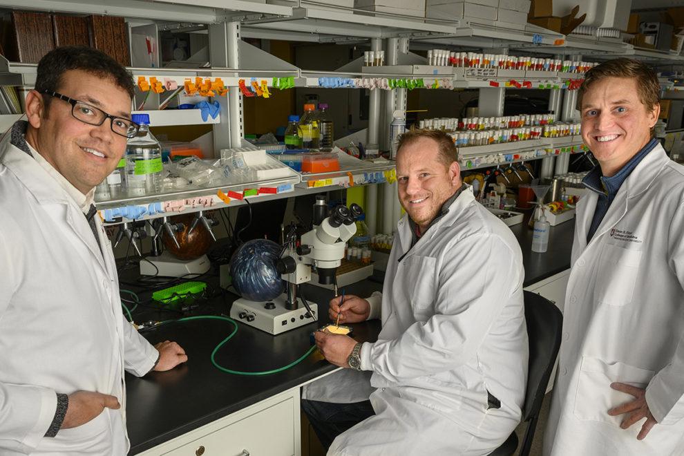Chris Davis, Jason Gerstner, William Vanderheyden in lab