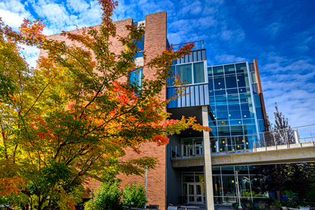 Trees and exterior view of nursing building.