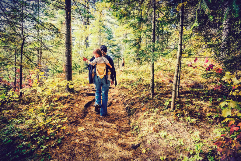 A man and his boy walk through a forest