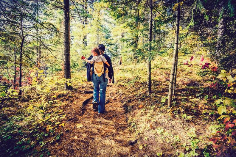 A man and his boy walk through a forest