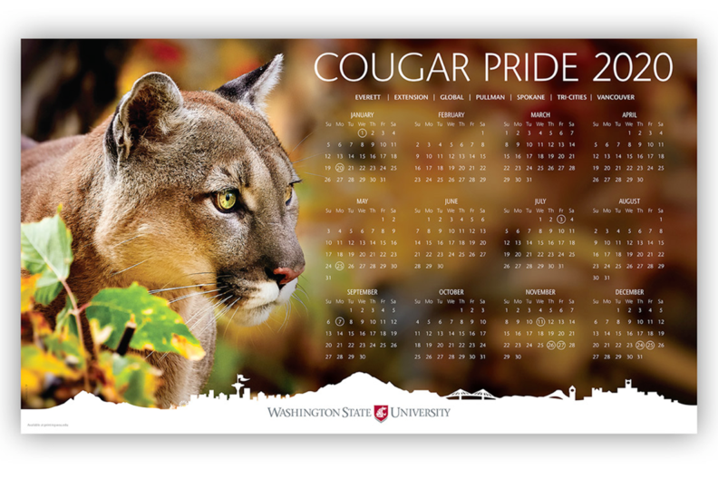 2020 calendar with a cougar photo along left side
