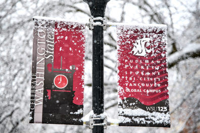 Snow-covered banners on a pole advertising all of the WSU campuses.
