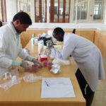Murugan Subbiah (left) and Beatus Lyimo process fecal samples.