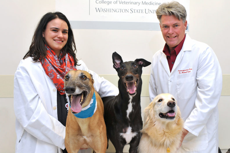 Researchers Stephanie Martinez and Michael Court pose with their dogs.