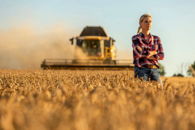 A woman stands in front of a combine harvesting wheat.