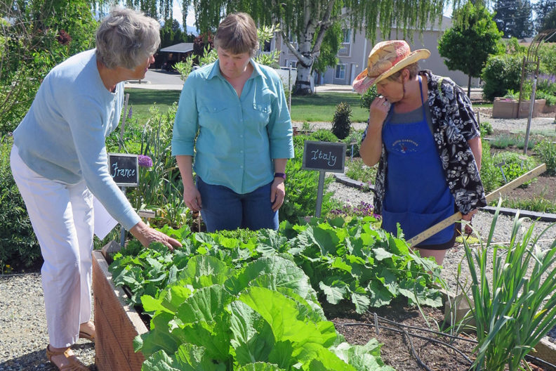 Three women examine and discuss the contents of a raised garden bed.