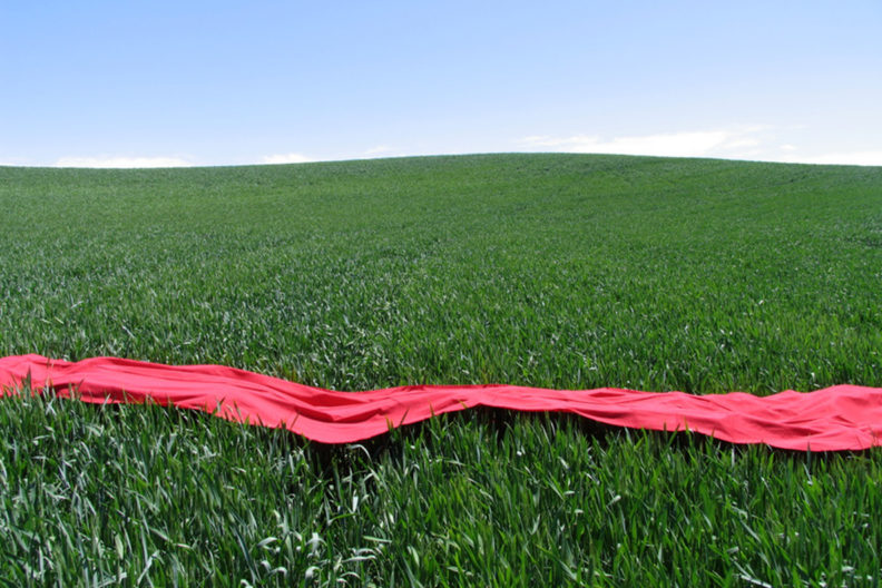 Wheat field decorated with a long cloth.