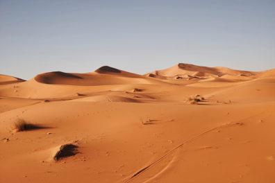 The Saharan desert.