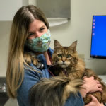Hilary Wright poses with HoneyBee, a 10-year-old Maine Coon, on June 11.