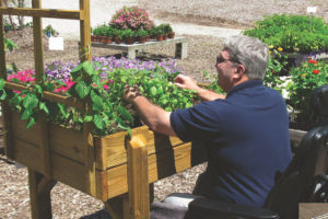 A man works at a raised garden bed.