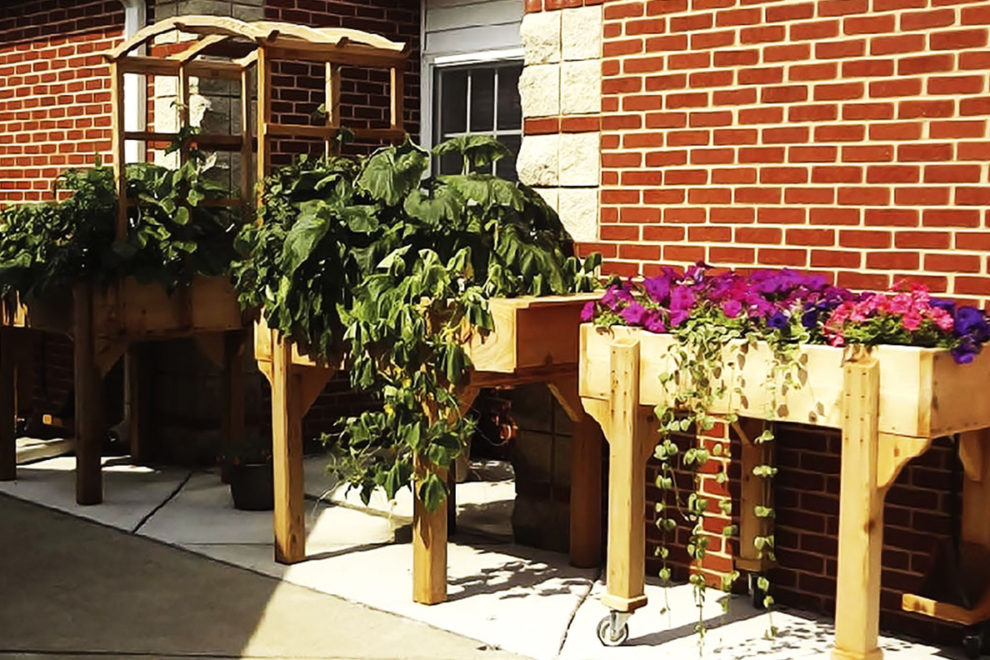 Raised garden beds lined up against a brick wall.