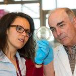 Leen Kawas and Joe Harding looking at a petri dish