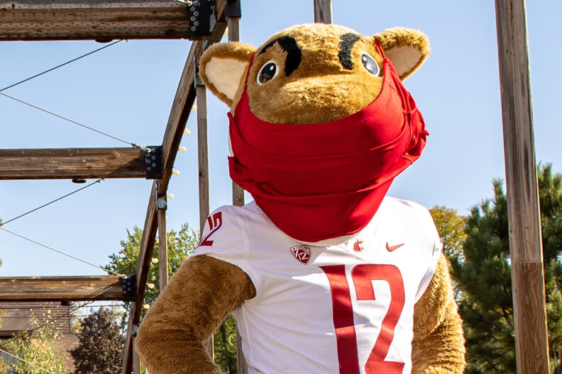 Closeup of Butch T. Cougar wearing a face mask.