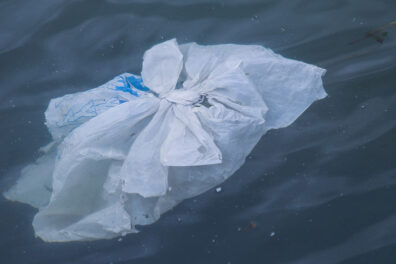 Plastic shopping bag floating in water.