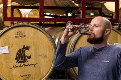 Cellar master samples wine