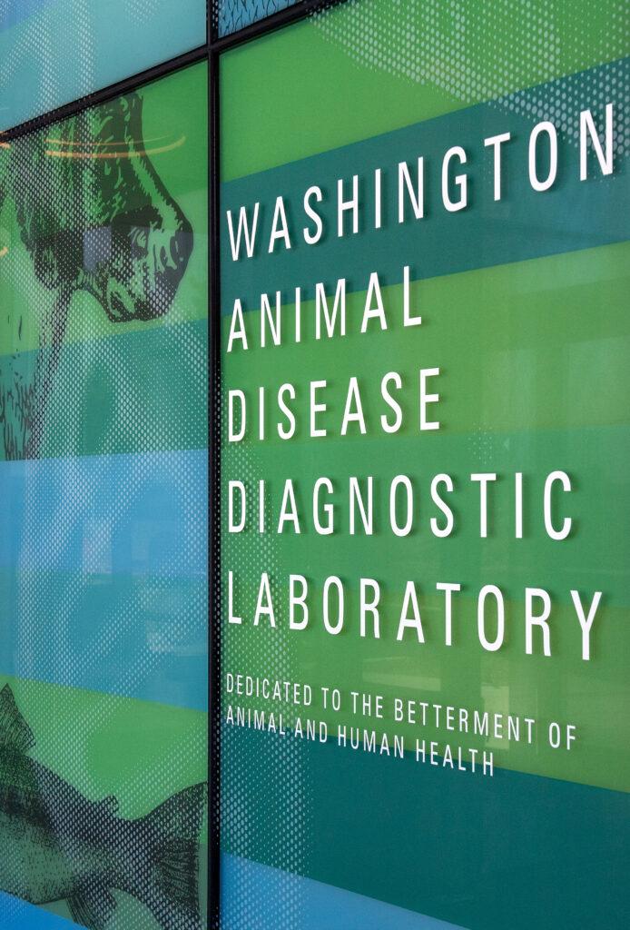 Window at the entrance of the Washington Animal Disease Diagnostic Laboratory.