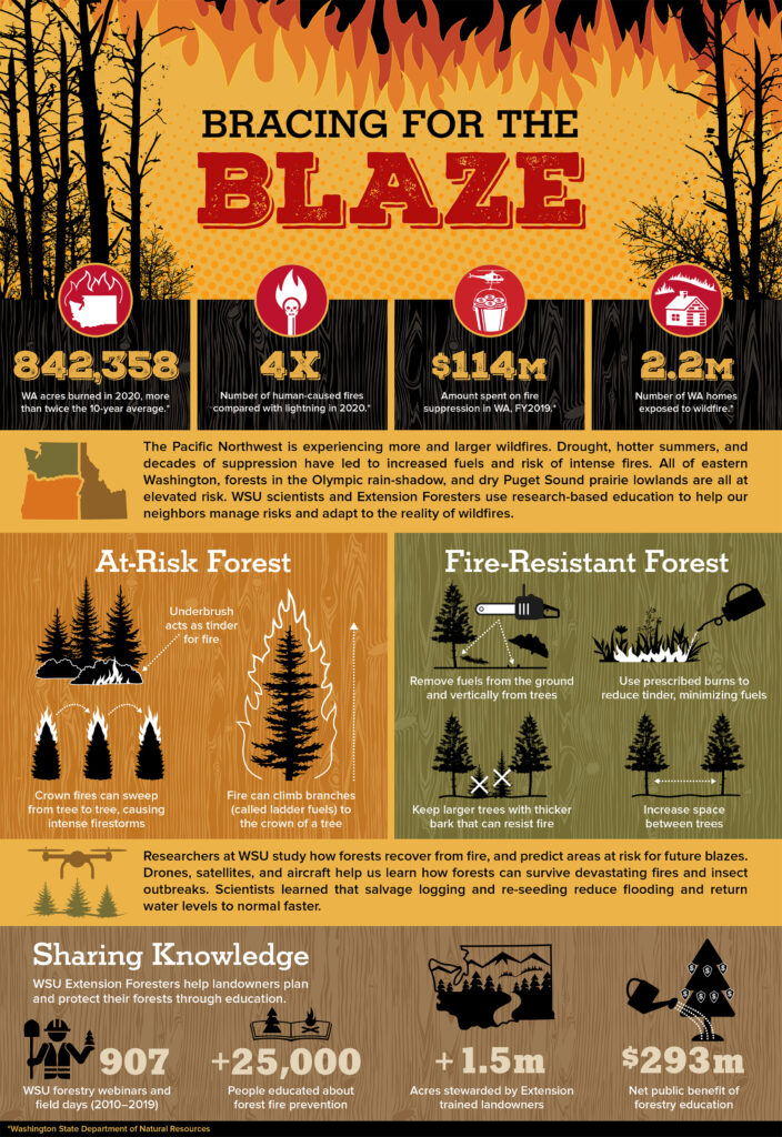 Infographic that lists wildfire facts for the Pacific Northwest.