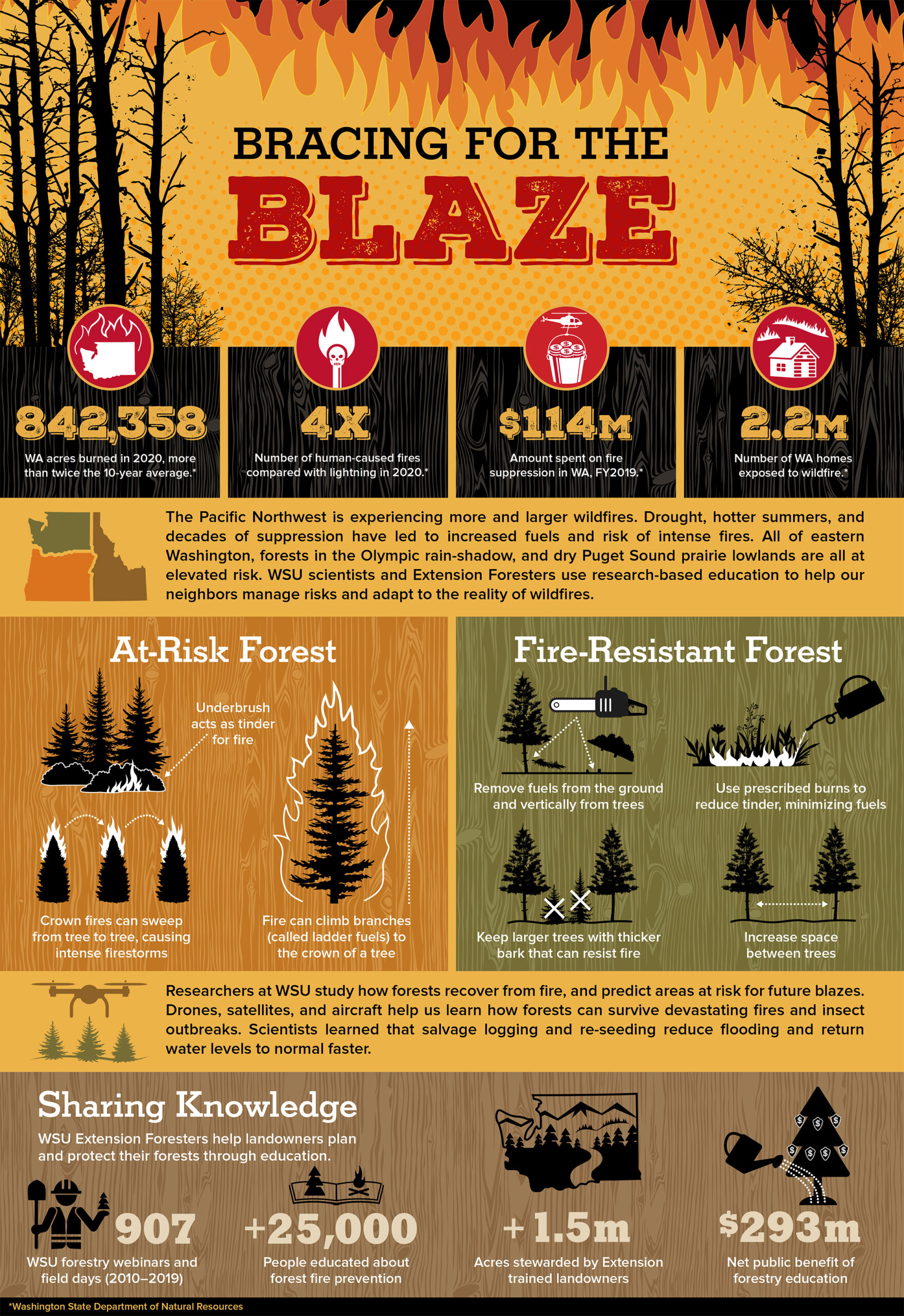 Infographic that shares the impact, dangers, and ways to make forests more resilient to wildfire.