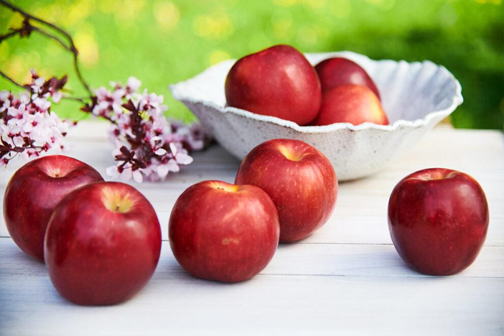 Cosmic Crisp apples on a picnic table.