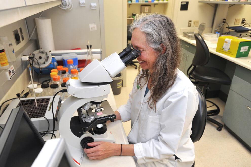Closeup of Susan Noh in the lab.