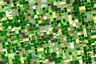 A NASA satellite image showing several square- and circular-shaped fields used for farming.