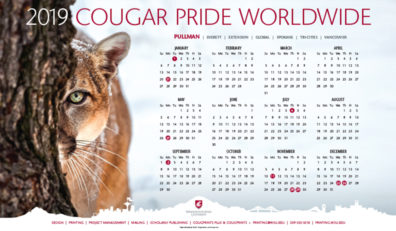 2019 photo wall calendar