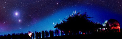 Night sky with lots of stars and a tree and people
