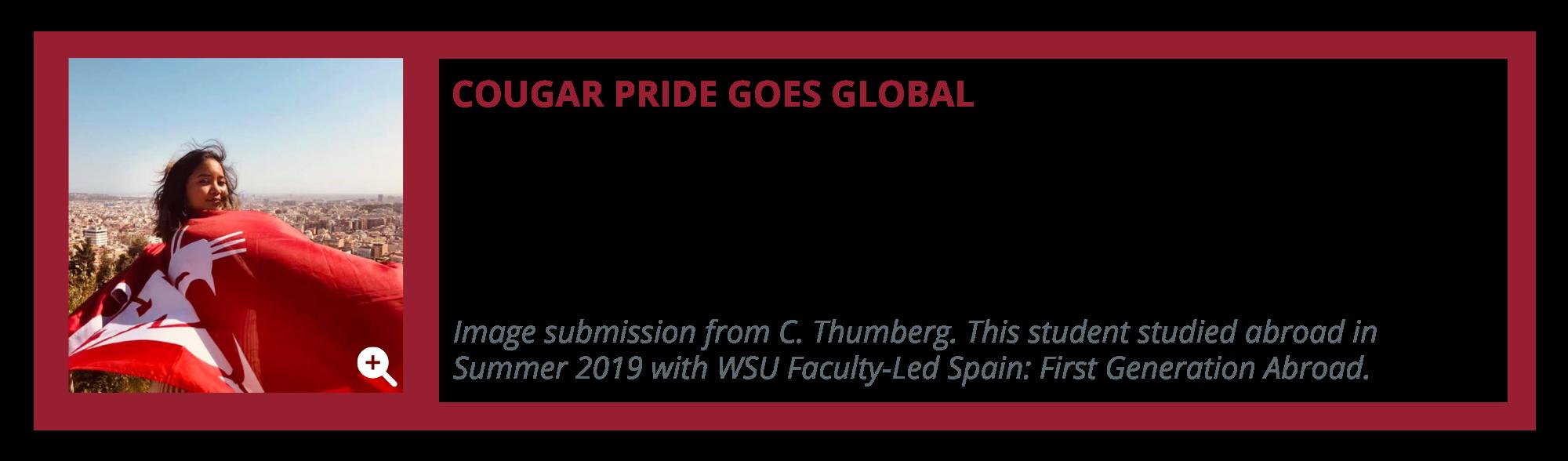 Wsu Academic Calendar 2022 2023.Study Abroad Anyone Anytime Anywhere Washington State University
